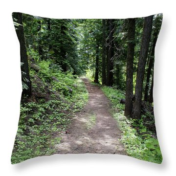 Throw Pillow featuring the photograph Shady Grove Path by Ben Upham III