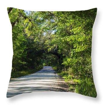 Throw Pillow featuring the photograph Shady Lane In Ocklawaha by Deborah Smolinske