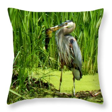 Shady Lunchtime Throw Pillow