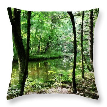 Shady Woods Throw Pillow by Susan Savad