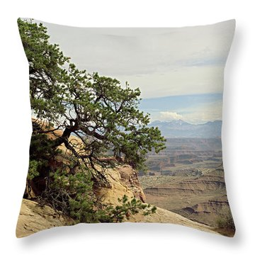Shafer Canyon Overlook Throw Pillow