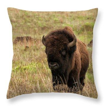 Shaggy Beast Throw Pillow