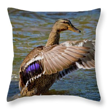 Throw Pillow featuring the photograph Shake It Off by Linda Unger
