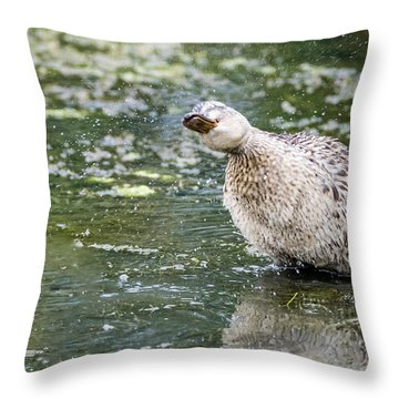Shake It Off Throw Pillow