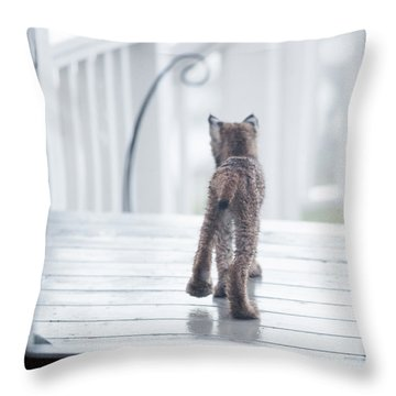 Throw Pillow featuring the photograph Shake It Off by Tim Newton