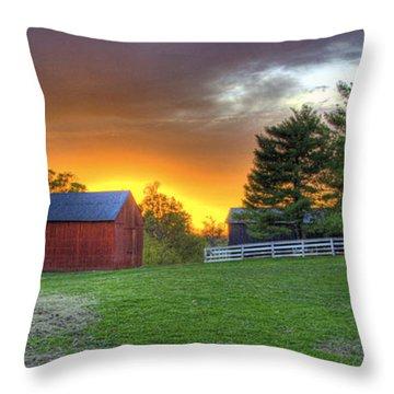 Shaker Animals At Sunset Throw Pillow