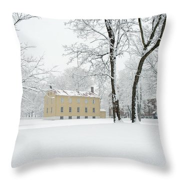 Shaker Winter Throw Pillow