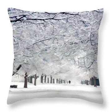 Shaker Winter Walkway Throw Pillow