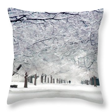 Shaker Winter Walkway Throw Pillow