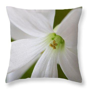 Shamrock Blossom Throw Pillow
