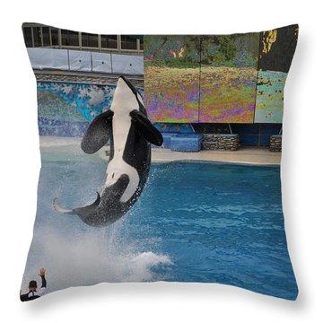 Shamu Splash Throw Pillow