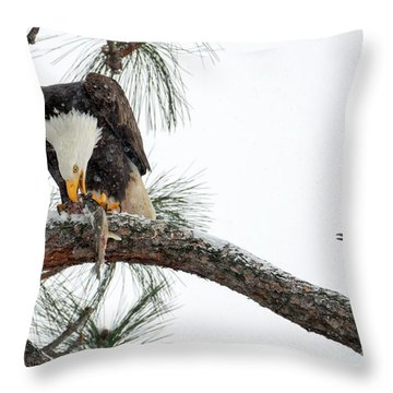 Share The Wealth Throw Pillow by Mike Dawson
