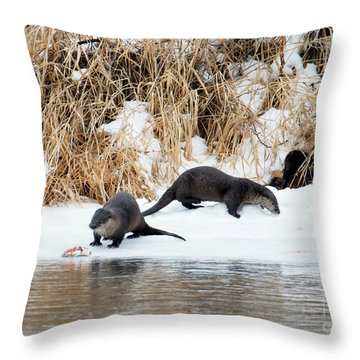 Sharing A Meal Throw Pillow by Mike Dawson