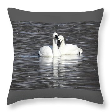 Throw Pillow featuring the photograph Sharing A Moment by Gary Wightman
