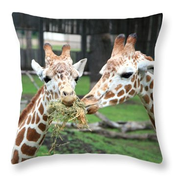 Sharing Lunch Throw Pillow by George Jones