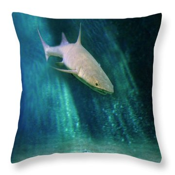 Shark And Anchor Throw Pillow by Jill Battaglia