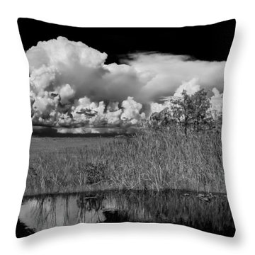 shark river slough BW Throw Pillow by Rudy Umans