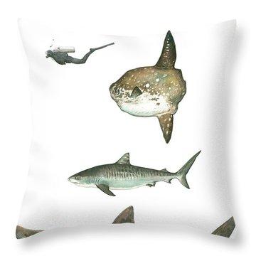 Sharks And Mola Mola Throw Pillow