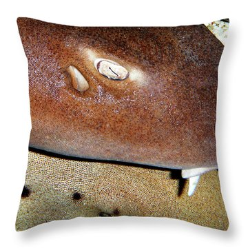 Throw Pillow featuring the photograph Sharks by Anthony Jones
