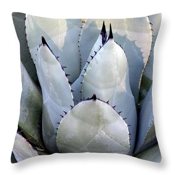 Throw Pillow featuring the photograph Sharp by Deborah  Crew-Johnson