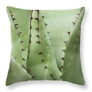 Sharp Impressions Throw Pillow