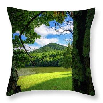 Sharp Top Through The Trees Throw Pillow