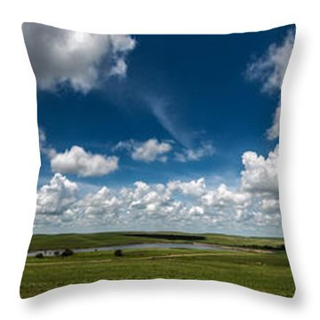 Sharps Creek Road Panorama Throw Pillow