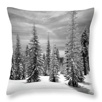 Shasta Snowtrees Throw Pillow by Martin Konopacki