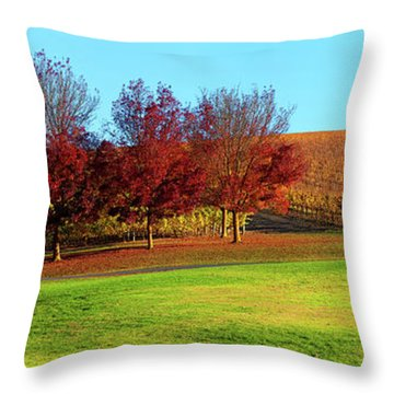 Shaw And Smith Winery Throw Pillow by Bill Robinson