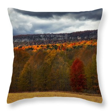 Shawangunk Mountains Hudson Valley Ny Throw Pillow