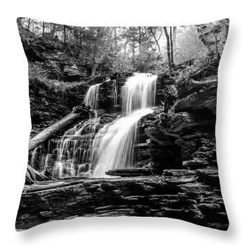 Shawnee Falls - 8892 Throw Pillow by G L Sarti