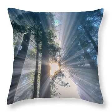 Shazam Throw Pillow by Patricia Davidson