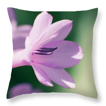 Throw Pillow featuring the photograph She Listens Like Spring by Linda Lees