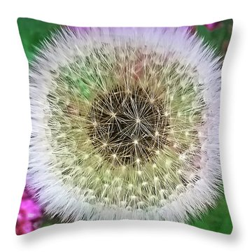 She Loves Me, She Loves Me Not Throw Pillow