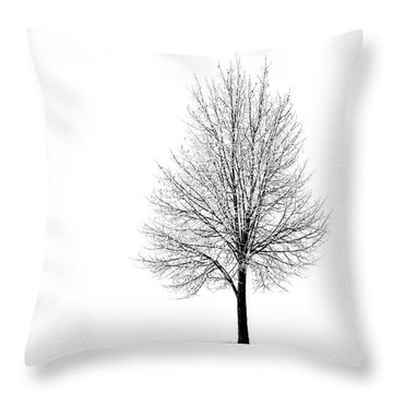 She Said She'd Come Throw Pillow by Yvette Van Teeffelen