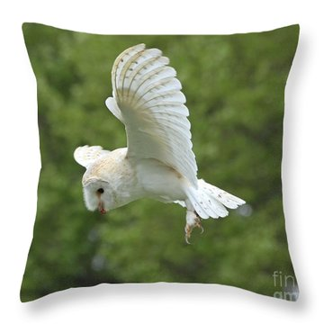 She Sees Sound Throw Pillow