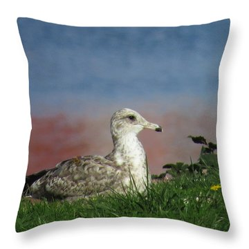 She Who Watches Throw Pillow