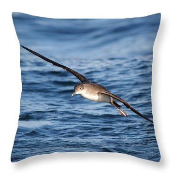 Throw Pillow featuring the photograph Shearwater by Richard Patmore