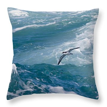 Shearwaters Throw Pillow