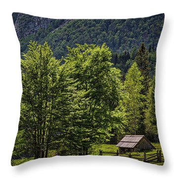 Throw Pillow featuring the photograph Shed In The Slovenian Alps by Stuart Litoff