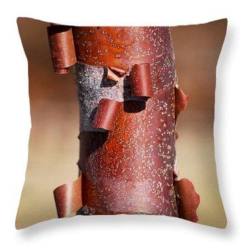 #sheddingthepast Throw Pillow by Becky Furgason