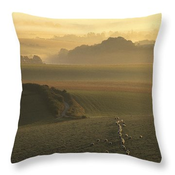 Sheep And Misty South Downs Throw Pillow by Hazy Apple