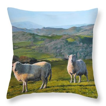 Sheep At Rhug Throw Pillow