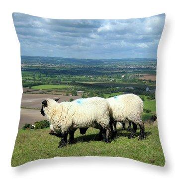 Sheep At Westbury Tor Throw Pillow by Kurt Van Wagner