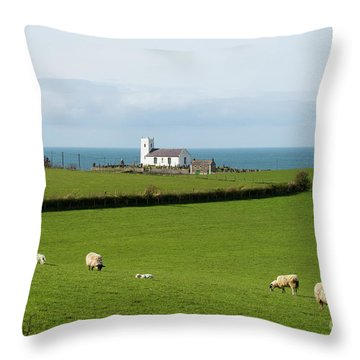 Throw Pillow featuring the photograph Sheep Grazing On Irish Coastline by Juli Scalzi