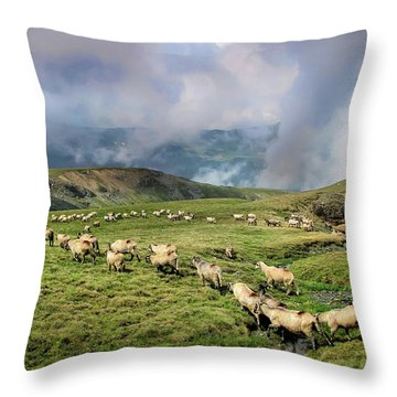 Sheep In Carphatian Mountains Throw Pillow