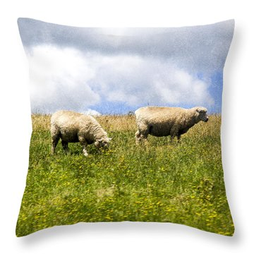 Sheep In New Zealand Throw Pillow