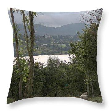 Sheep Near Lough Eske Throw Pillow