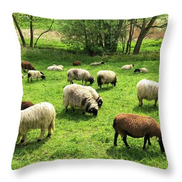 Sheep On Meadow Throw Pillow