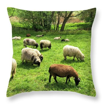 Sheep On Meadow Throw Pillow